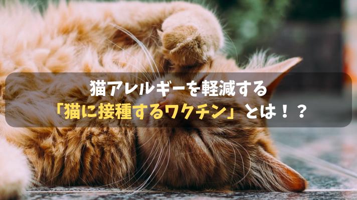猫アレルギー